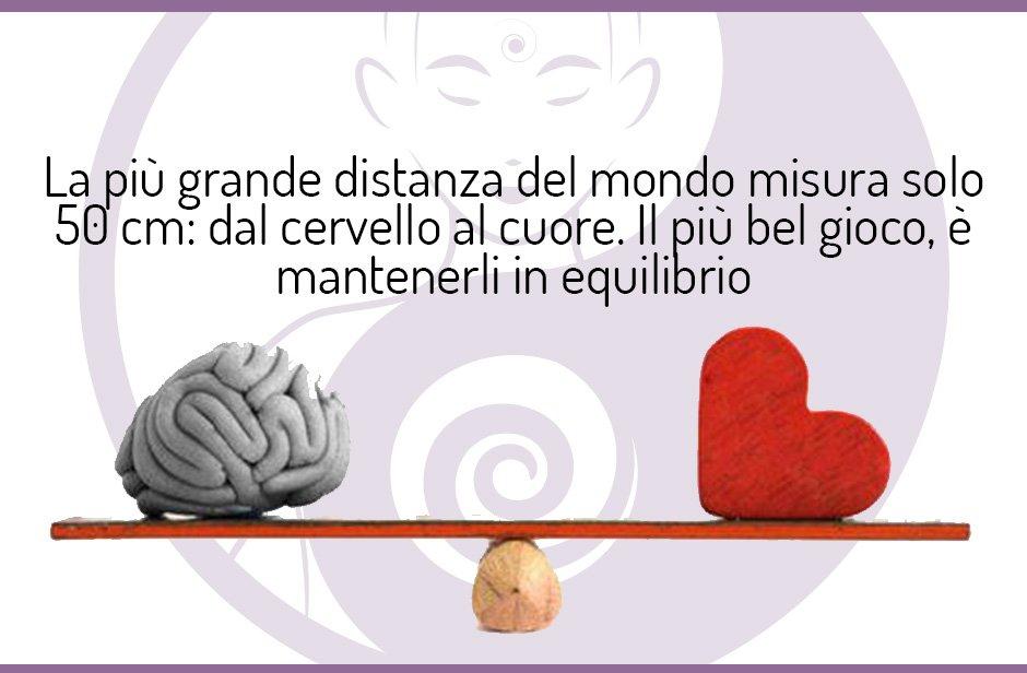 La grande distanza: cuore e cervello