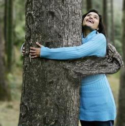 abbracciare gli alberi tao roma