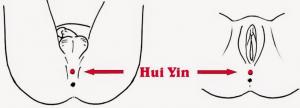 hui yin tao roma