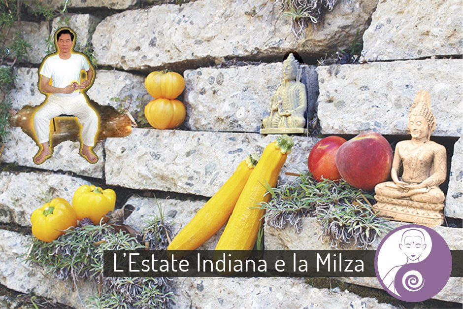 estate indiana nel Tao, medicina cinese e milza