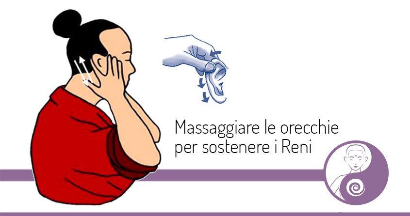 Massaggiare le orecchie per sostenere i Reni