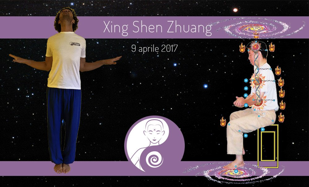 Xing Shen Zhuang: seminario – 9 aprile 2017