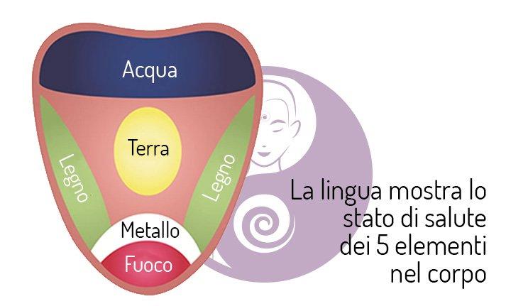 lingua 5 elementi medicina cinese