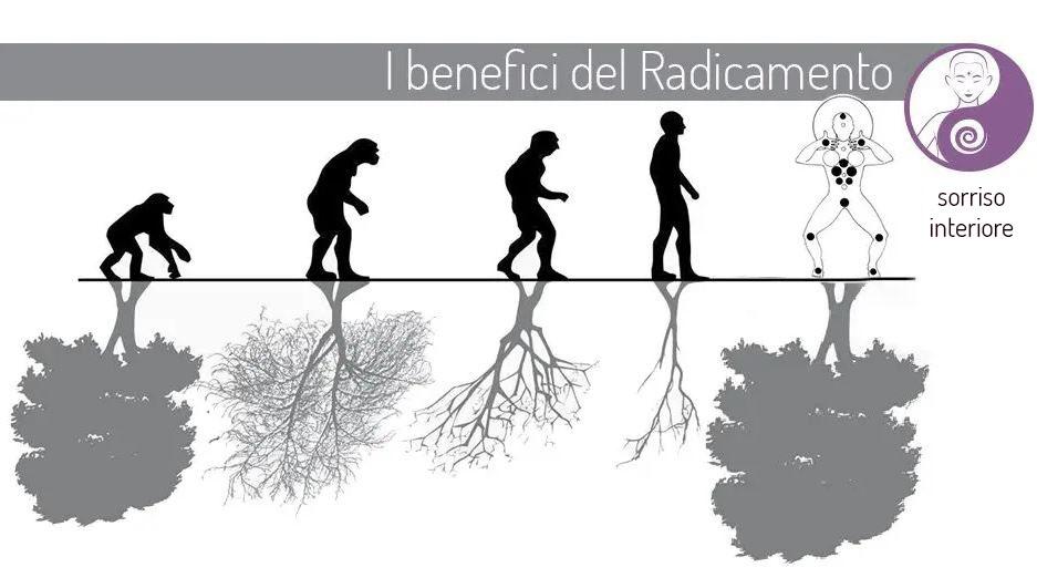 I benefici del radicamento