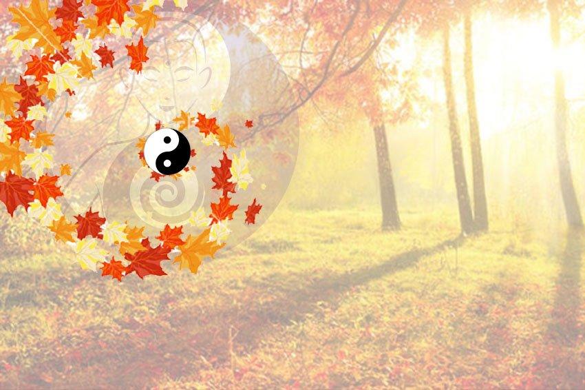 Vivere l'autunno nel Tao