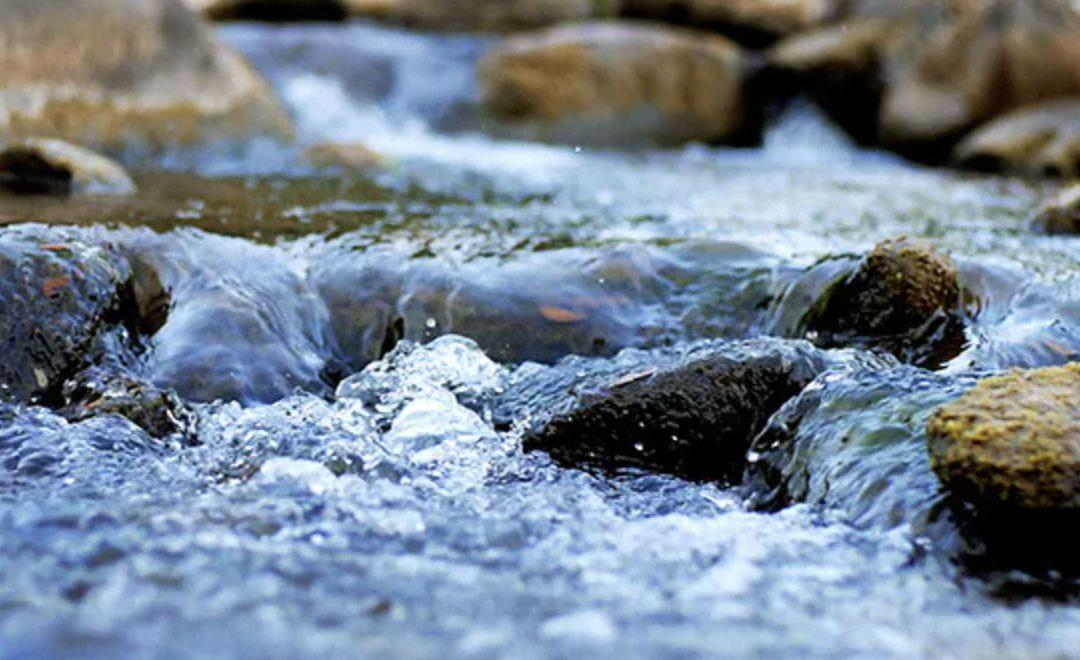 Il Tao: la Via dell'acqua che scorre di A. W. Watts