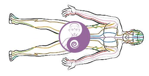 I 12 meridiani nel qi gong: come scoprire il loro percorso ed usarlo per la salute